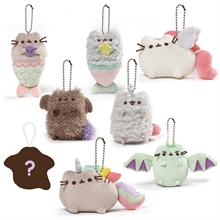 Pusheen Magical Surprise box